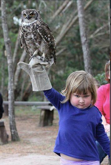 Girl_Owl