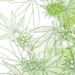 Hot Topics in Neuroscience: Marijuana for Parkinson's Disease?